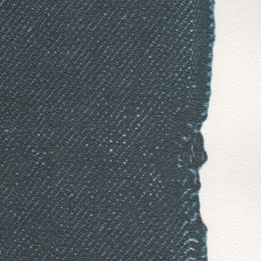 0118_Buttonhole-Selvage