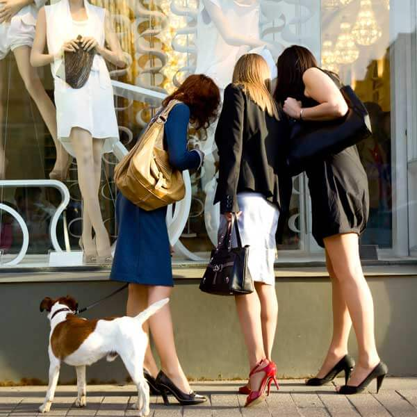 three women and dog looking in store front