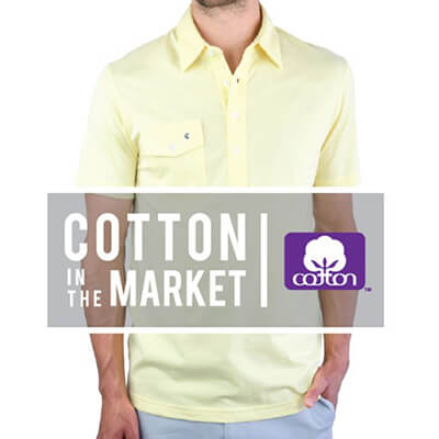 Cotton in the market - Criquet